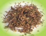 Το ταραξάκο είναι το πιο θαυμαστό βότανο! Απεριόριστες δυνατότητες για δυνατή υγεία!