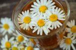 5 φυσικές θεραπείες με βάση το χαμομήλι!!!