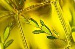 Ελαιόλαδο: 4 ιδιότητες που «επιβάλλουν» την καθημερινή κατανάλωσή του