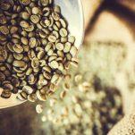 Πράσινοι κόκκοι καφέ για αδυνάτισμα: Είναι αποτελεσματικοί στην απώλεια βάρους;