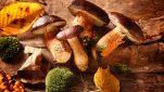 Το αντικαρκινικό τρόφιμο που ενεργοποιεί το ανοσοποιητικό σύστημα
