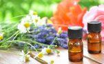 5 ιαματικά βότανα που επιβάλλεται να έχετε στο σπίτι σας!!!