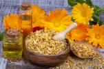 Μύκητες γεννητικών οργάνων: 6 βότανα για φυσική αντιμετώπιση