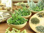 21 εκπληκτικά βότανα της ελληνικής γης κι οι ιδιότητές τους