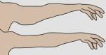 Γυμναστική χεριών στο σπίτι – 8 Ασκήσεις για όμορφα χέρια
