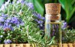 Βότανα κατάλληλα για παθήσεις του αναπνευστικού, με αποχρεμπτική, αντιβηχική, βλεννολυτική δράση